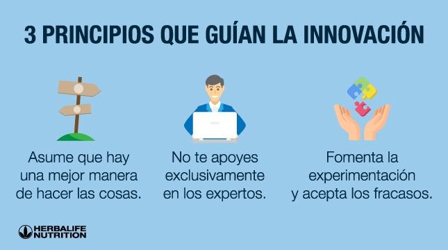 principios que dan forma a la innovación